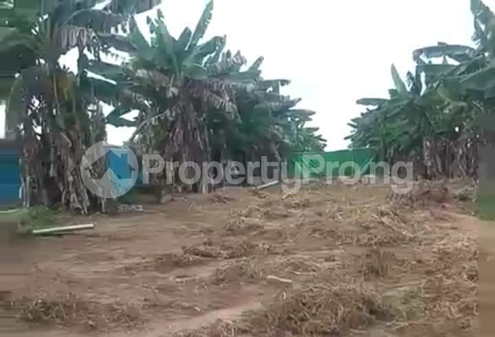 Commercial Property for sale Agbara Agbara-Igbesa Ogun - 16