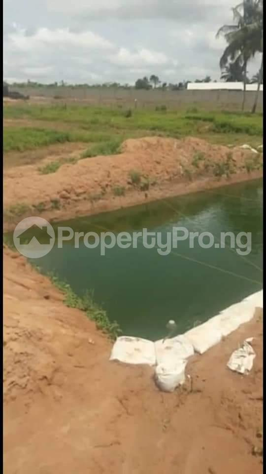 Commercial Property for sale Agbara Agbara-Igbesa Ogun - 6