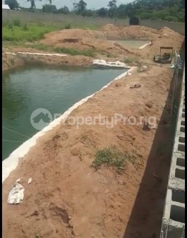 Commercial Property for sale Agbara Agbara-Igbesa Ogun - 4