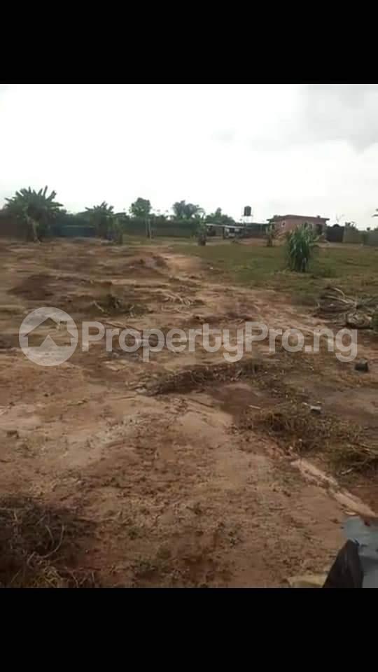 Commercial Property for sale Agbara Agbara-Igbesa Ogun - 15