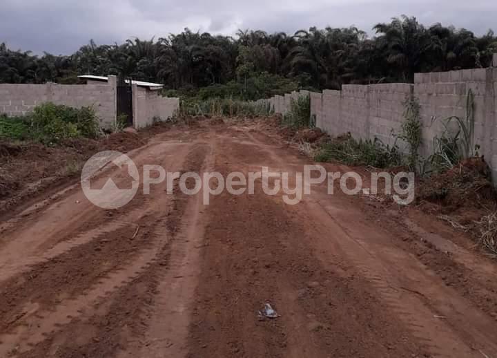 Commercial Property for sale Agbara Agbara-Igbesa Ogun - 10