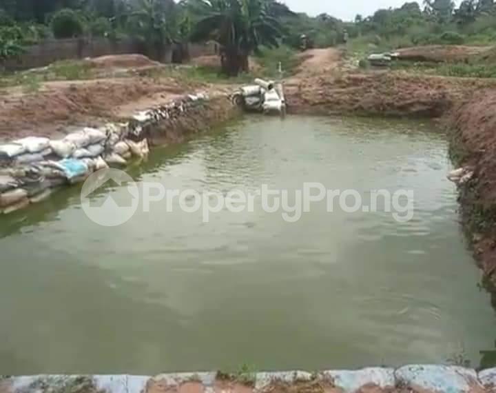 Commercial Property for sale Agbara Agbara-Igbesa Ogun - 9