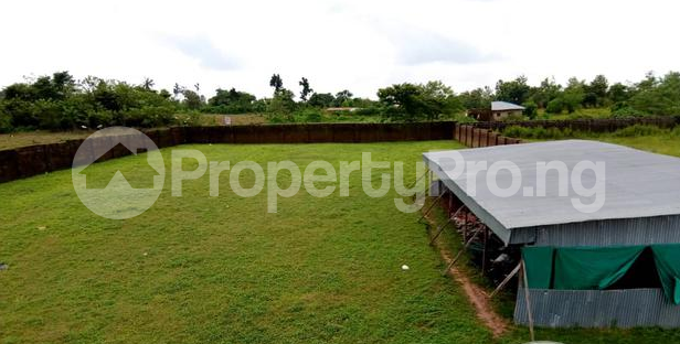 Factory Commercial Property for sale - Ibadan Oyo - 8