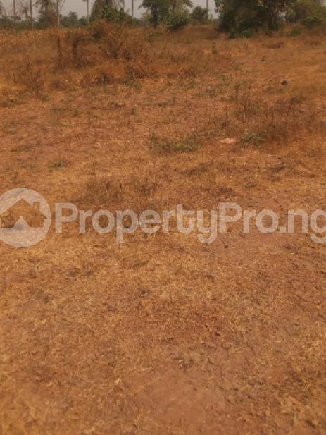 Residential Land Land for sale Osun State University,  Obokun Osun - 1