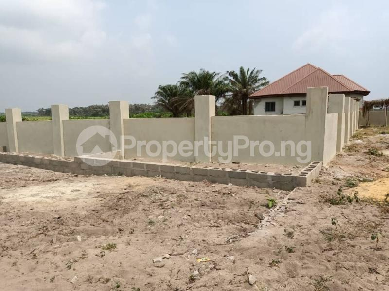 Residential Land for sale Homeland Estate Along Coastal Road Eleko Ibeju-Lekki Lagos - 2
