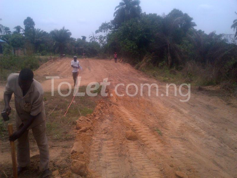 Land for sale Egbeda Oyo - 4