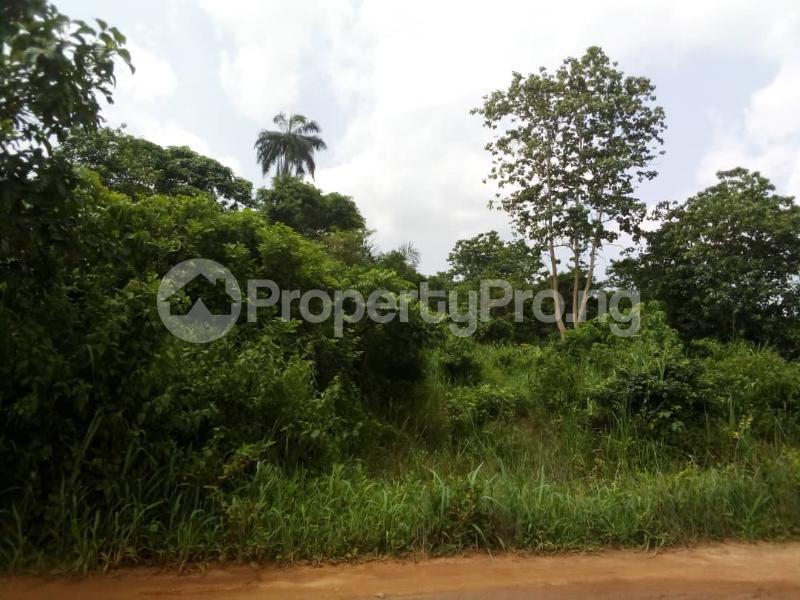 Residential Land Land for sale Opposite FUNAAB Campus in Mawuko Ikerekodo Abeokuta Ogun - 0