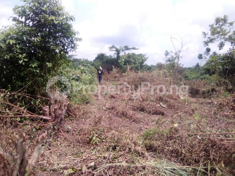 Mixed   Use Land for sale Itori Town,9 Minutes Drive From Itori Junction Lagos Abeokuta Express Papalanto Ewekoro Ogun - 0