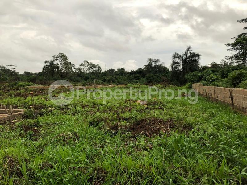 Residential Land Land for sale opp C&S church Ajanakun area off Idowu egba, Lagos Alimosho Lagos - 0