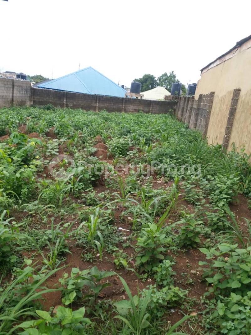 1 bedroom mini flat  Residential Land Land for sale Road 4 House 17 Agunfoye Bustop Along Igbogbo Road Ikorodu Igbogbo Ikorodu Lagos - 9