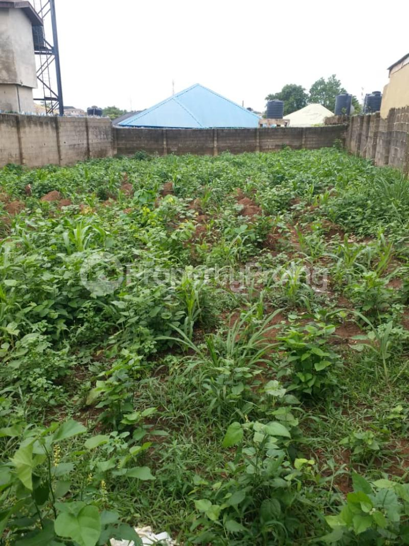 1 bedroom mini flat  Residential Land Land for sale Road 4 House 17 Agunfoye Bustop Along Igbogbo Road Ikorodu Igbogbo Ikorodu Lagos - 10