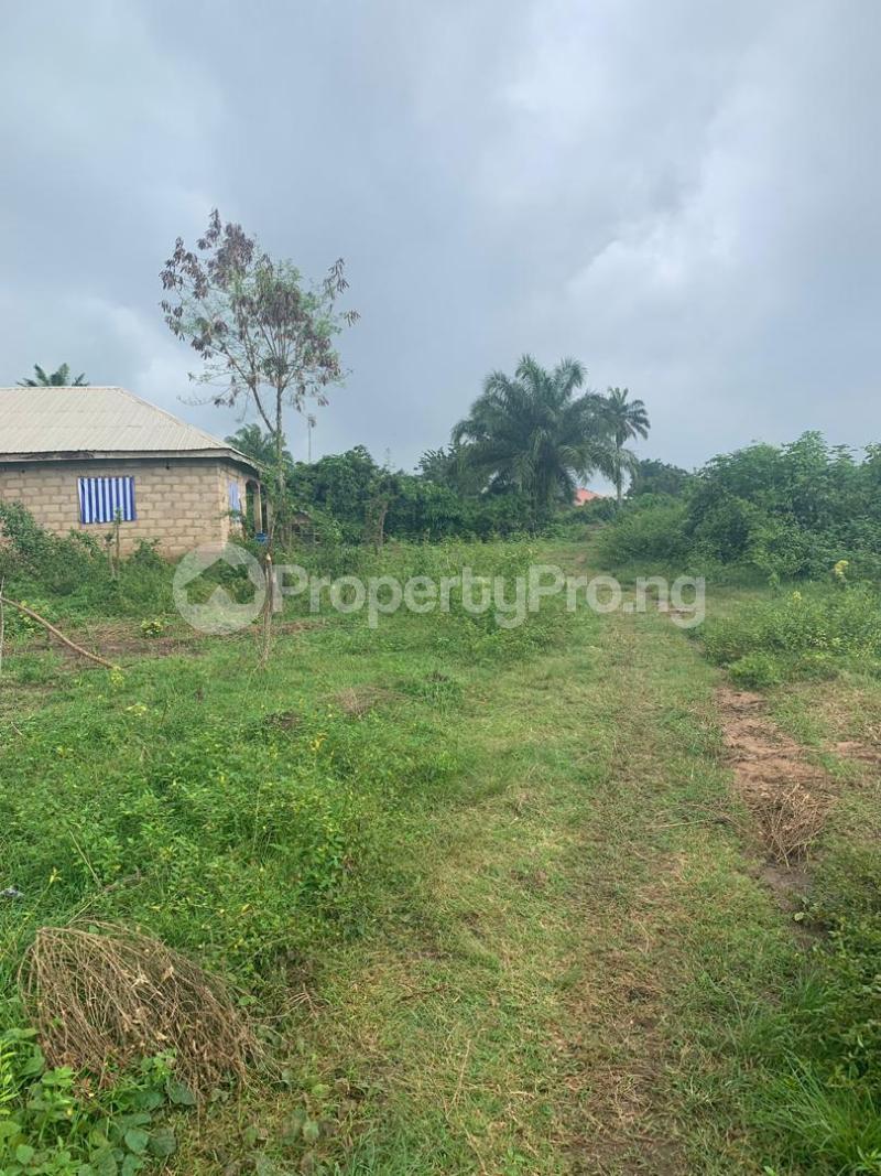 Land for sale plots of land at alabata area, Moniya Ibadan off Ijaye/moniya road. Akinyele Oyo - 0