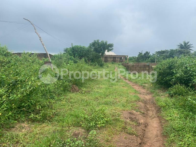 Land for sale plots of land at alabata area, Moniya Ibadan off Ijaye/moniya road. Akinyele Oyo - 6