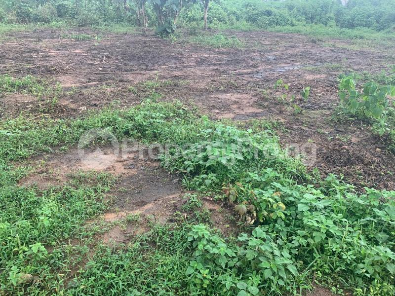 Land for sale plots of land at alabata area, Moniya Ibadan off Ijaye/moniya road. Akinyele Oyo - 5
