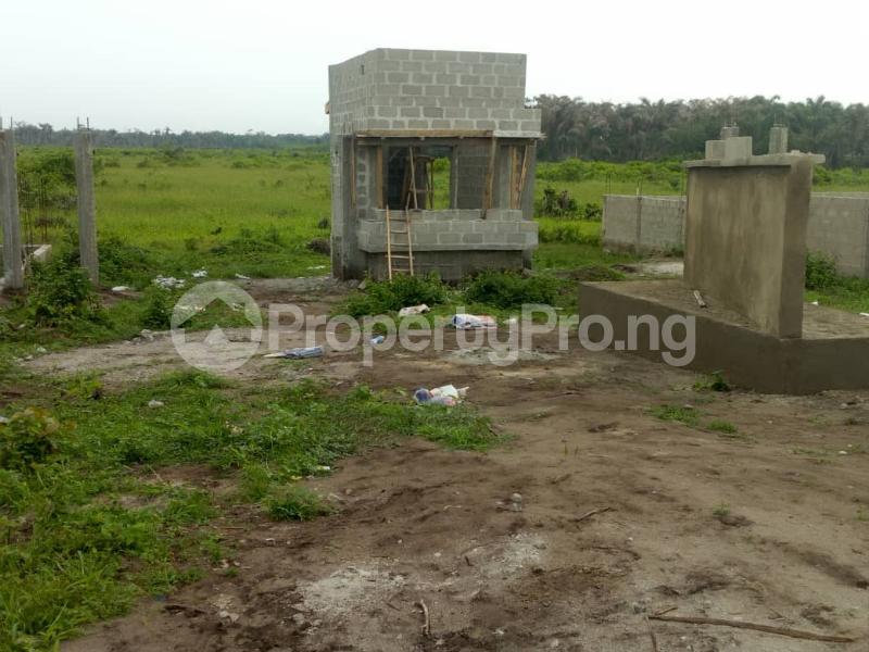 Mixed   Use Land for sale 10 Minutes From Amen Estate, Facing The Proposed Coastal Road To Victoria Island Eleko Ibeju-Lekki Lagos - 2