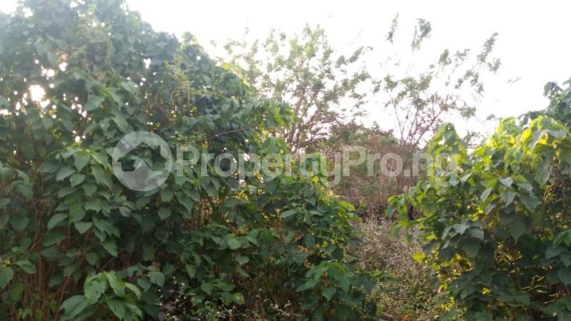 Residential Land Land for sale : behind DSS Estate, Ile Titun NIHORT area ibadan Jericho Ibadan Oyo - 2