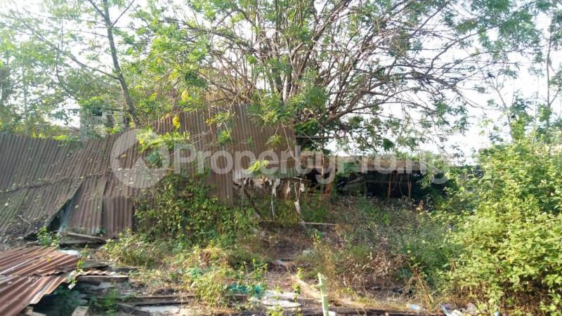 Residential Land Land for sale : behind DSS Estate, Ile Titun NIHORT area ibadan Jericho Ibadan Oyo - 3