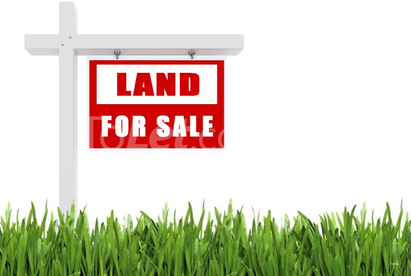 Land for sale Owode Ede Ede North Osun - 0