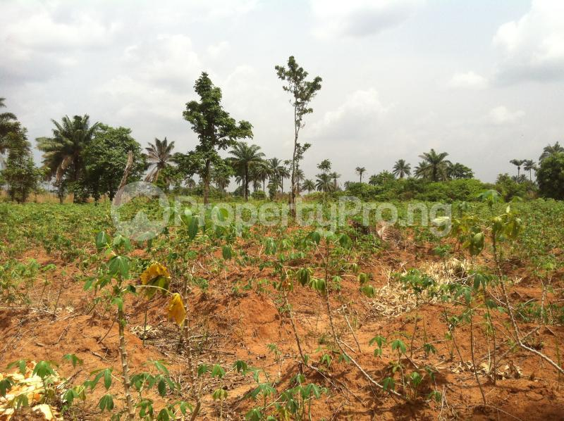 Residential Land Land for sale Within an Estate  Awka North Anambra - 2