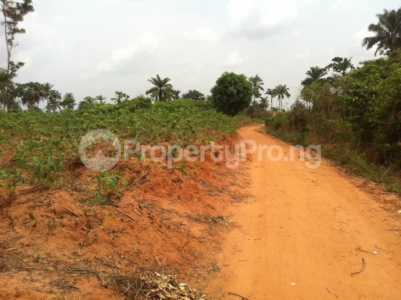Residential Land Land for sale Within an Estate  Awka North Anambra - 5