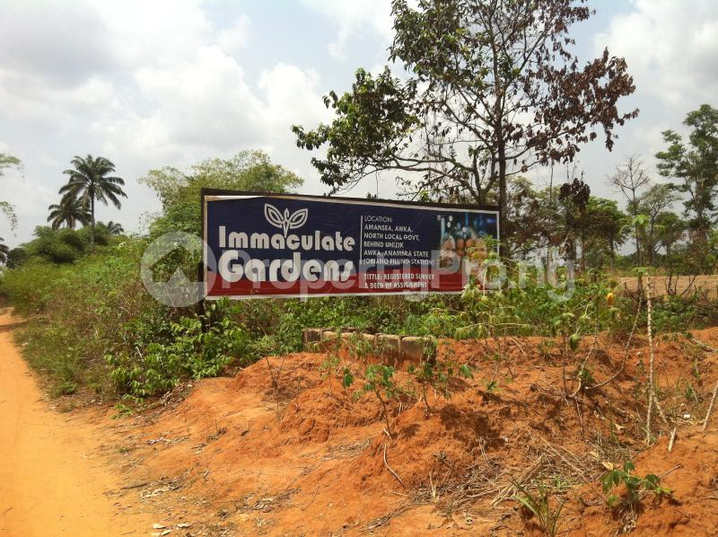 Residential Land Land for sale Within an Estate  Awka North Anambra - 1