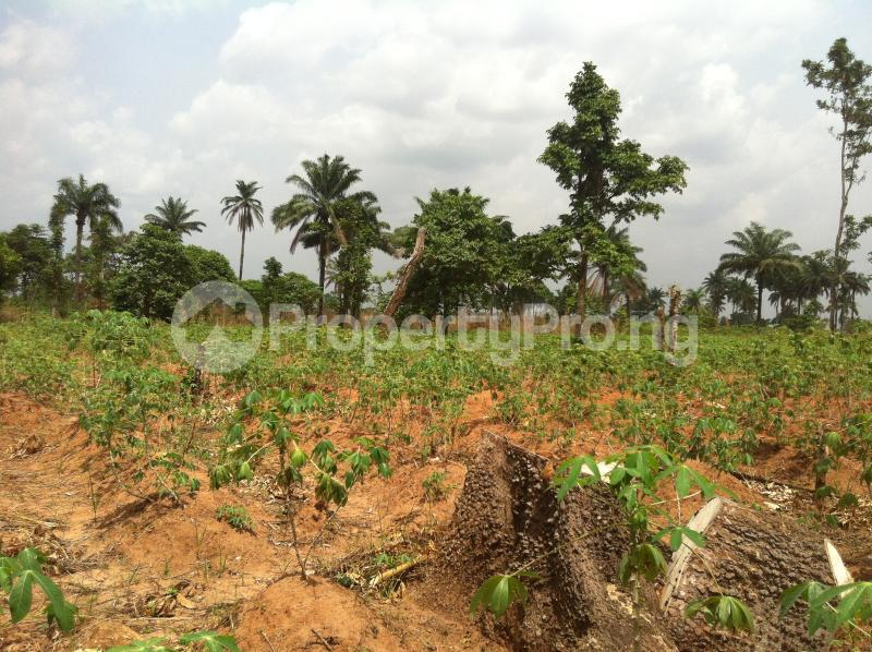 Residential Land Land for sale Within an Estate  Awka North Anambra - 4