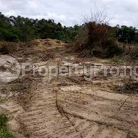 Residential Land Land for sale Eleko Ibeju-Lekki Lagos - 2