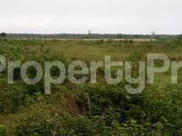 Residential Land Land for sale Oriyanrin Free Trade Zone Ibeju-Lekki Lagos - 0