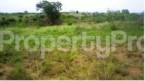Residential Land Land for sale Oriyanrin Free Trade Zone Ibeju-Lekki Lagos - 1