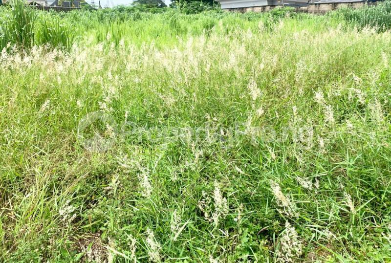 Residential Land for sale Ajayi Apata Estate Sangotedo Ajah Lagos - 0
