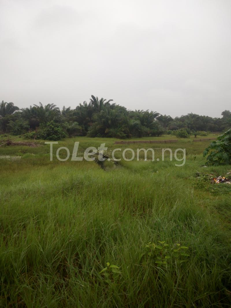 Land for sale Itori Ewekoro Ewekoro Ogun - 0