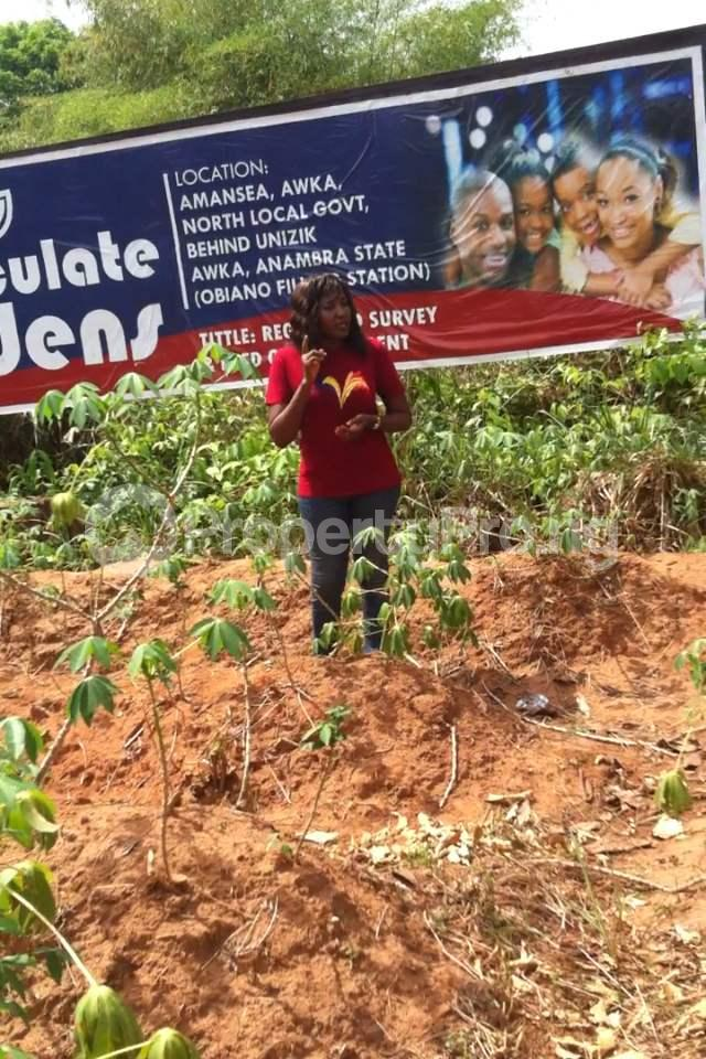 Residential Land Land for sale Within an Estate  Awka North Anambra - 6