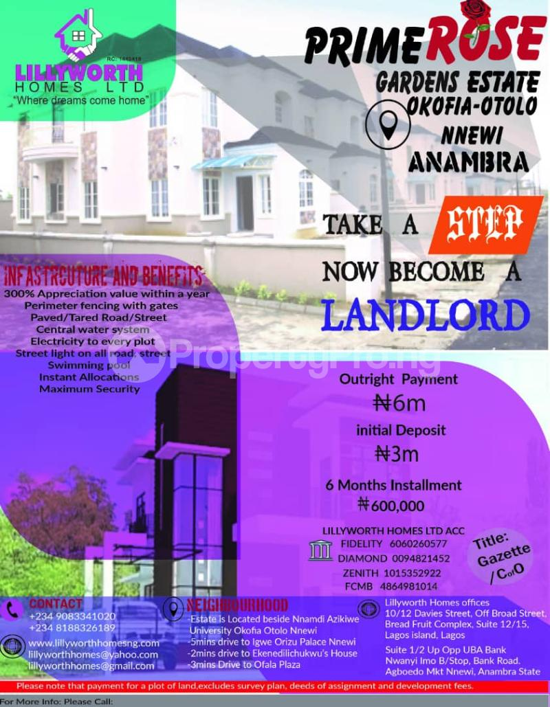 Residential Land Land for rent Okofia Otolo Nnewi Nnewi North Anambra - 1