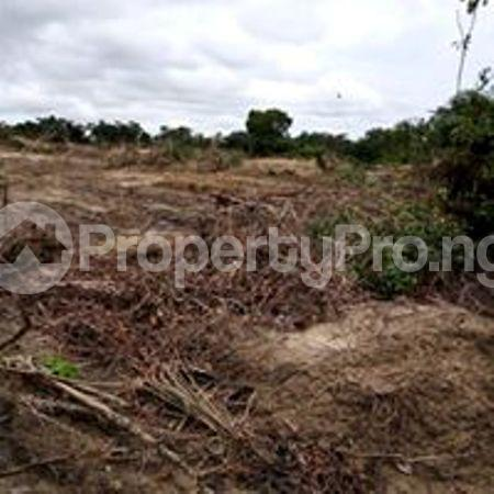 Residential Land Land for sale Eleko Ibeju-Lekki Lagos - 1