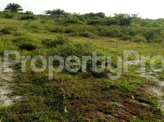 Residential Land Land for sale Oriyanrin Free Trade Zone Ibeju-Lekki Lagos - 2