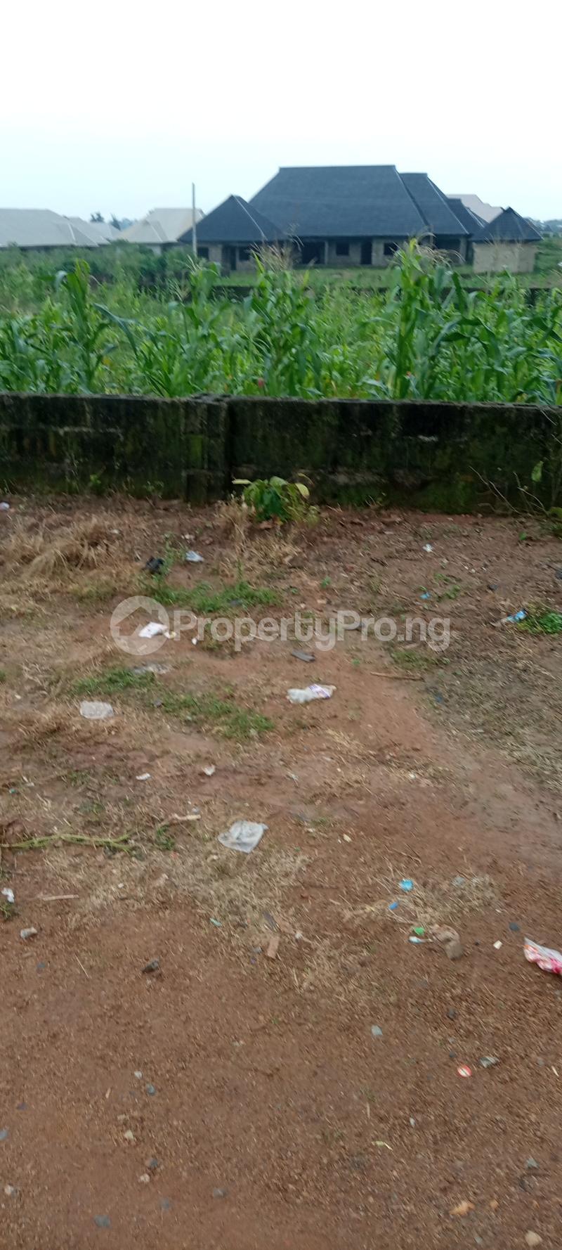 Residential Land for sale Harmony Estate Ondo West Ondo - 3
