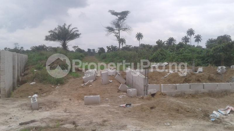 Mixed   Use Land Land for sale Around Igwuruta Check-Point  Igwurta-Ali Port Harcourt Rivers - 0