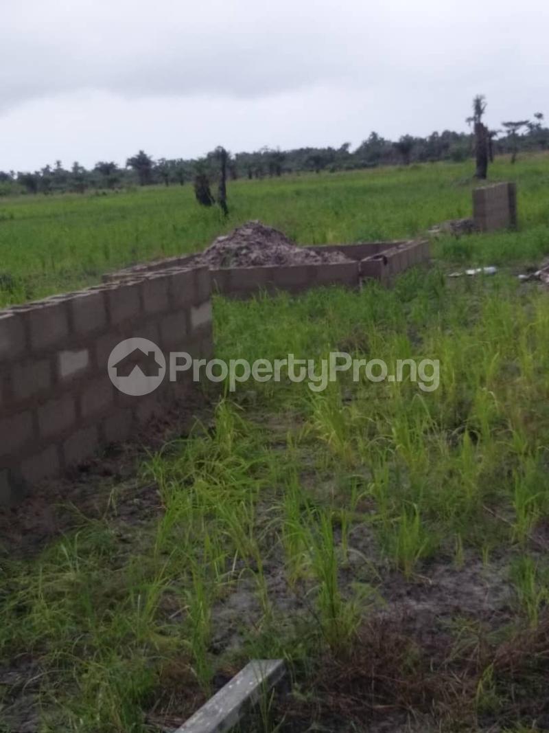 Land for sale Obeagu beside Centenary City Enugu Enugu - 2
