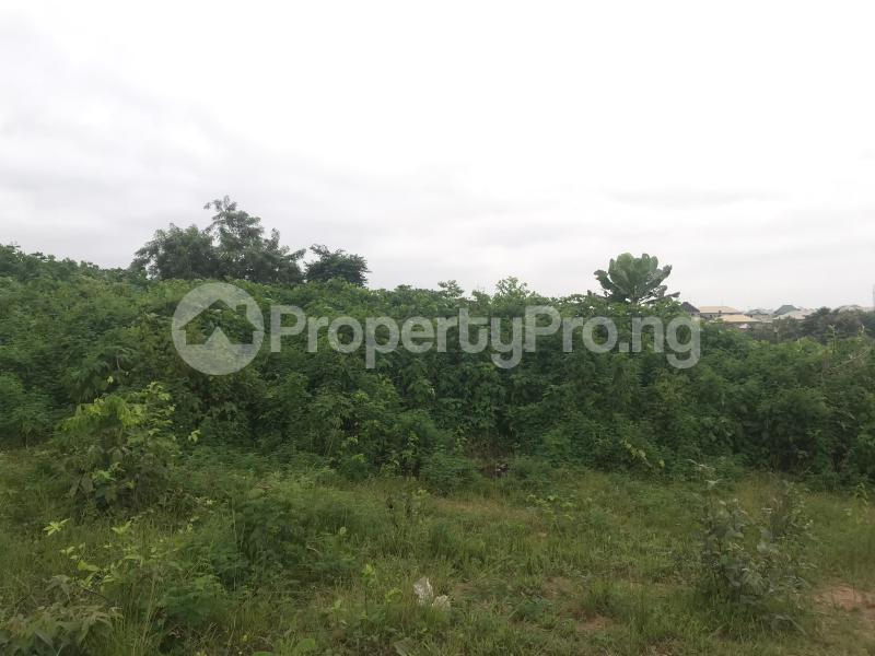 Residential Land Land for sale Ring road GRA beside Adeoyo state hospital Ring Rd Ibadan Oyo - 5