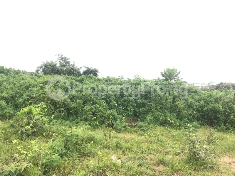 Residential Land Land for sale Ring road GRA beside Adeoyo state hospital Ring Rd Ibadan Oyo - 4