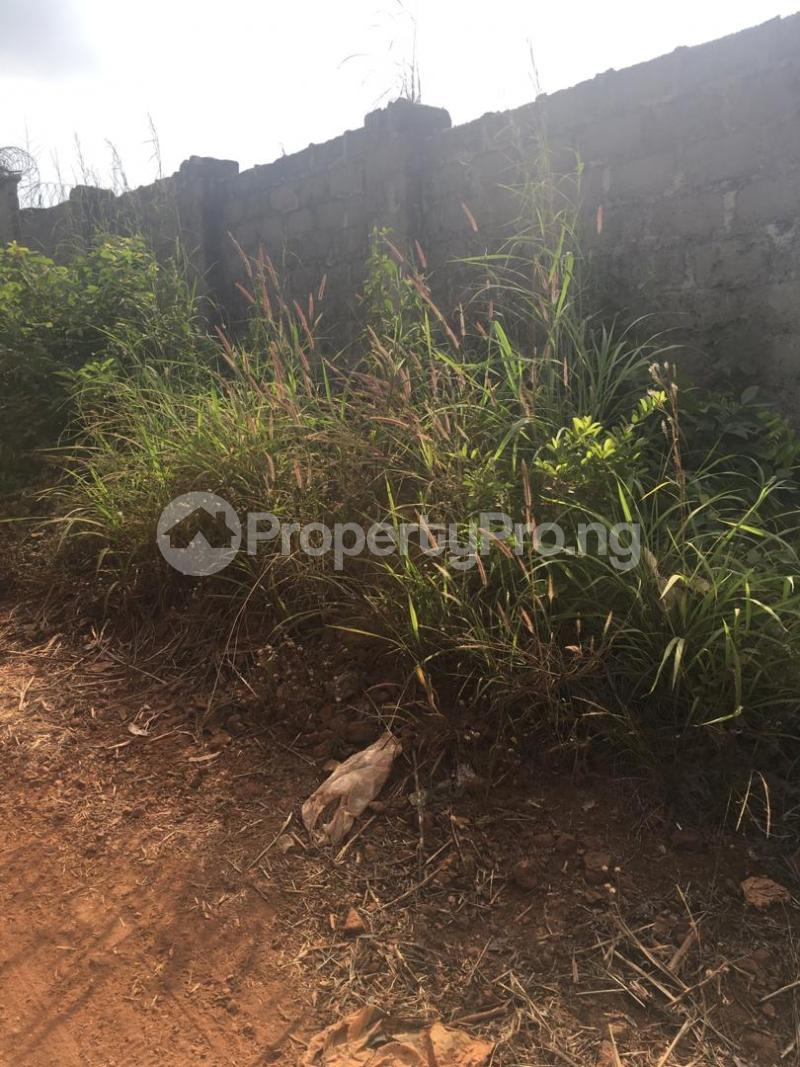 Residential Land Land for sale At Amuuche Ndiuno Nkwelle Ezunaka In Oyi Local Government Of Anambra State Oyi Anambra - 0