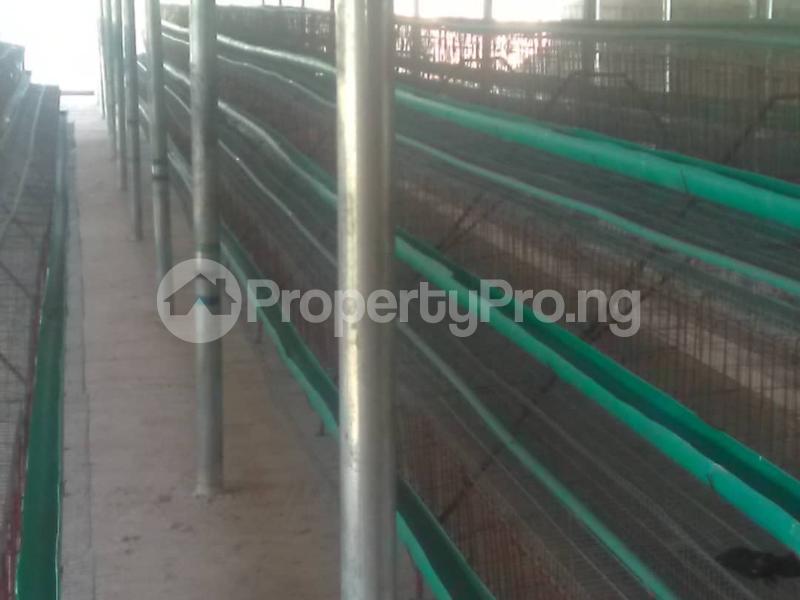 Commercial Land for sale Akpuoga Nike Enugu Enugu - 0