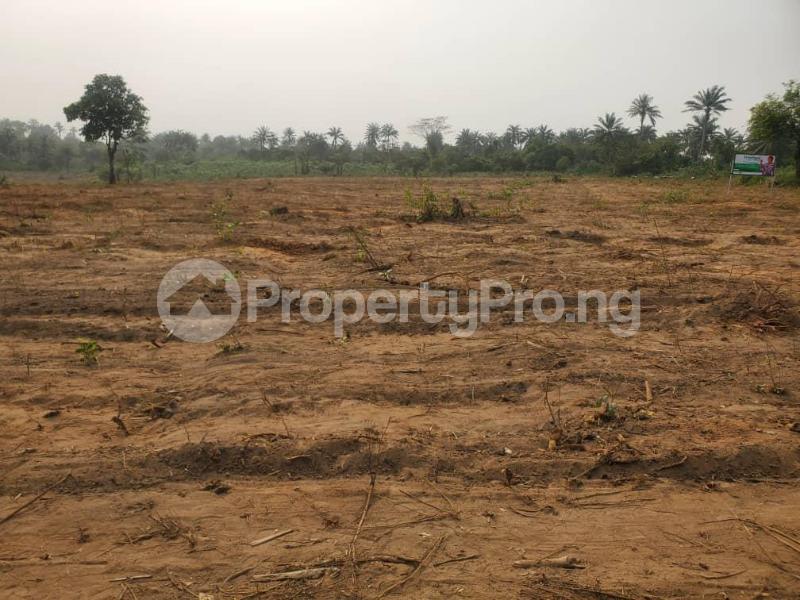 Residential Land Land for sale Otunla Community Oyo Oyo - 1