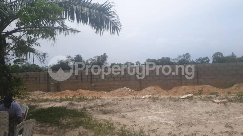 Residential Land Land for sale Otunla Community Oyo Oyo - 2