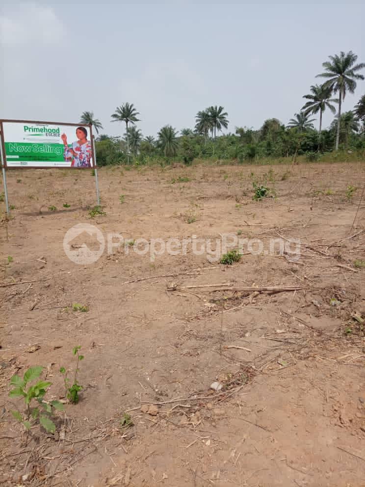 Residential Land Land for sale Otunla Community Oyo Oyo - 6