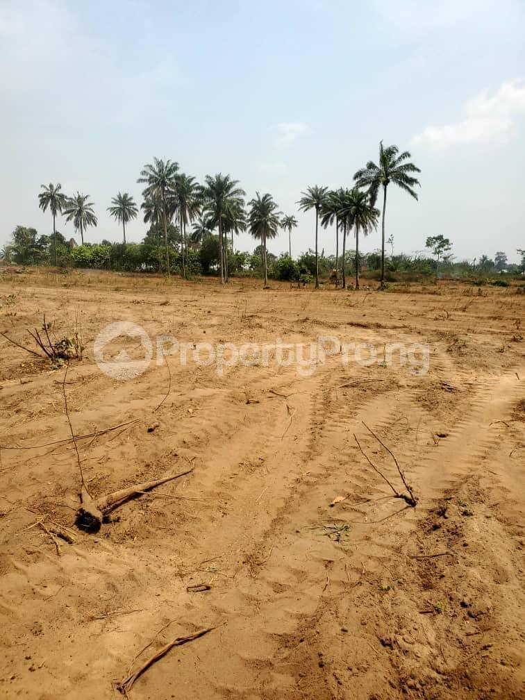 Residential Land Land for sale Otunla Community Oyo Oyo - 5