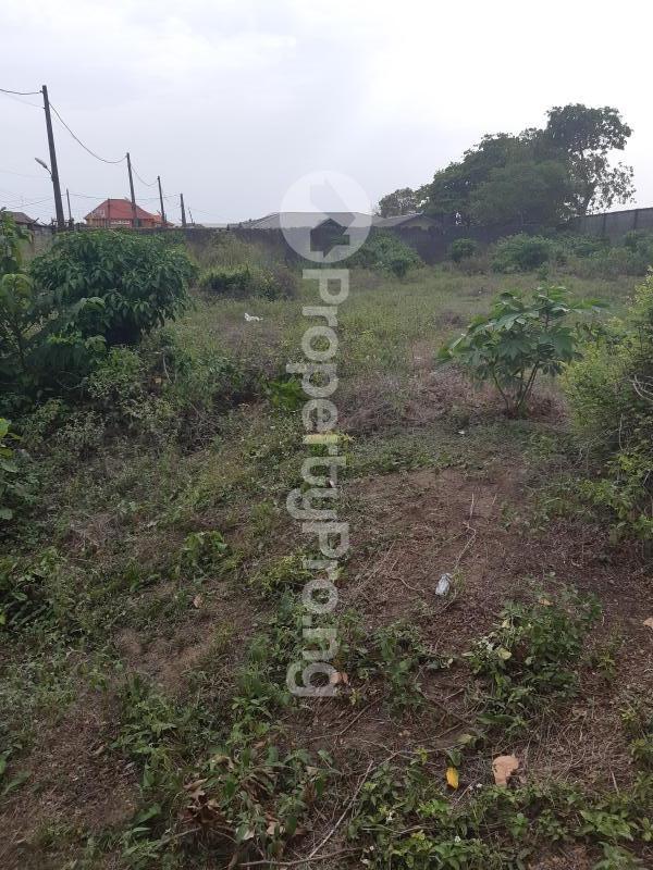 Residential Land for sale Goodnews Estate Sangotedo Ajah Lagos - 3