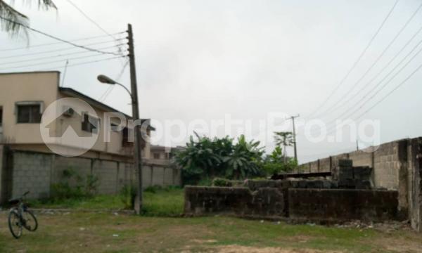 Residential Land for sale Good Homes Estate, Ado Road Ado Ajah Lagos - 5
