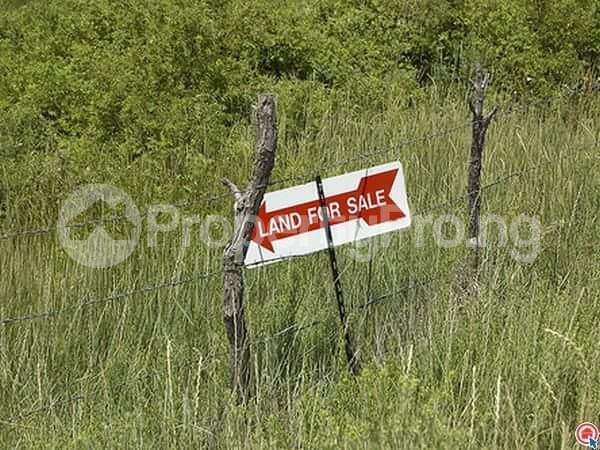 Mixed   Use Land Land for sale 6th Avenue Festac Amuwo Odofin Lagos - 0