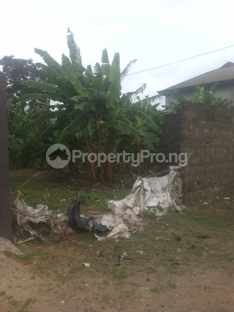 3 bedroom Detached Bungalow House for sale ISHITU ROAD, EGAN Igando Ikotun/Igando Lagos - 1